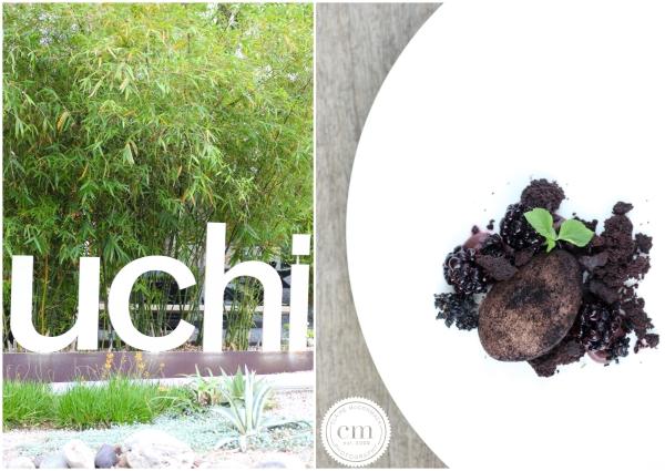 AFWF-Uchi{ClaireMcCormackPhotography2013}-9701